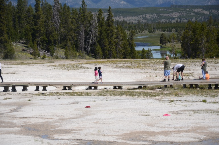 The kids walking along the boardwalk surrounding the Grand Prismatic