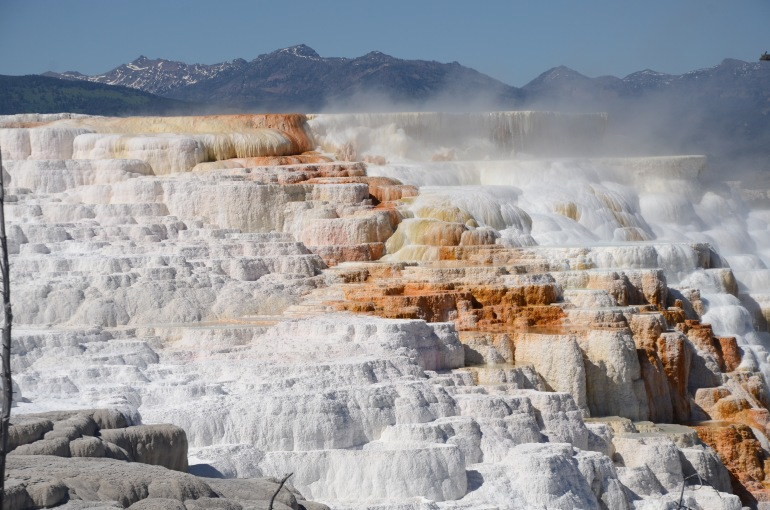The multi-layered steaming hot rocks at Mammoth hot-springs